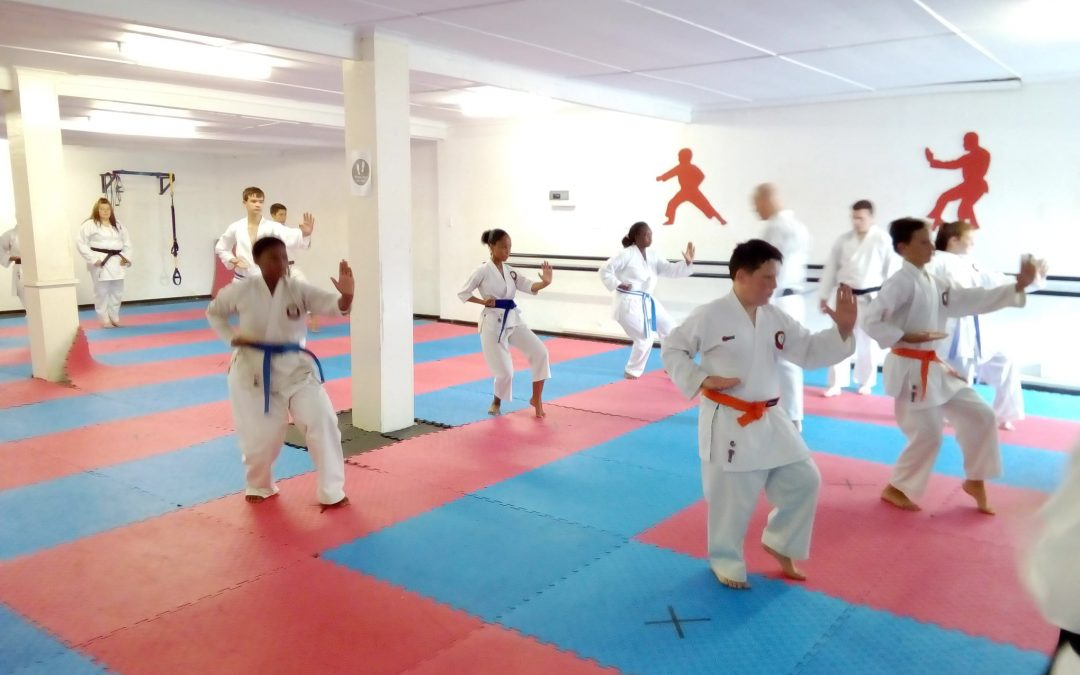 Karate Guide Part 1 – Your First Class
